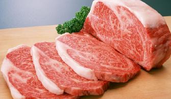 お肉のお弁当